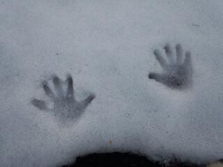 雪がとけた〜